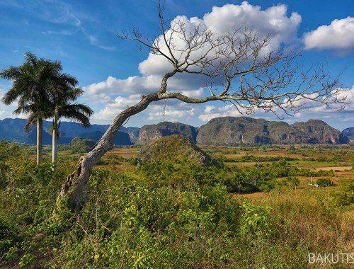 Dolina Vinales i bohomazy Fidela