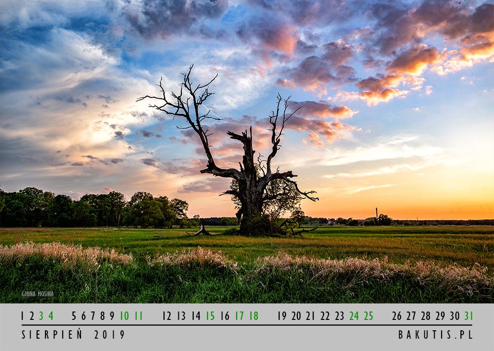 Kalendarz 2019 - sierpień